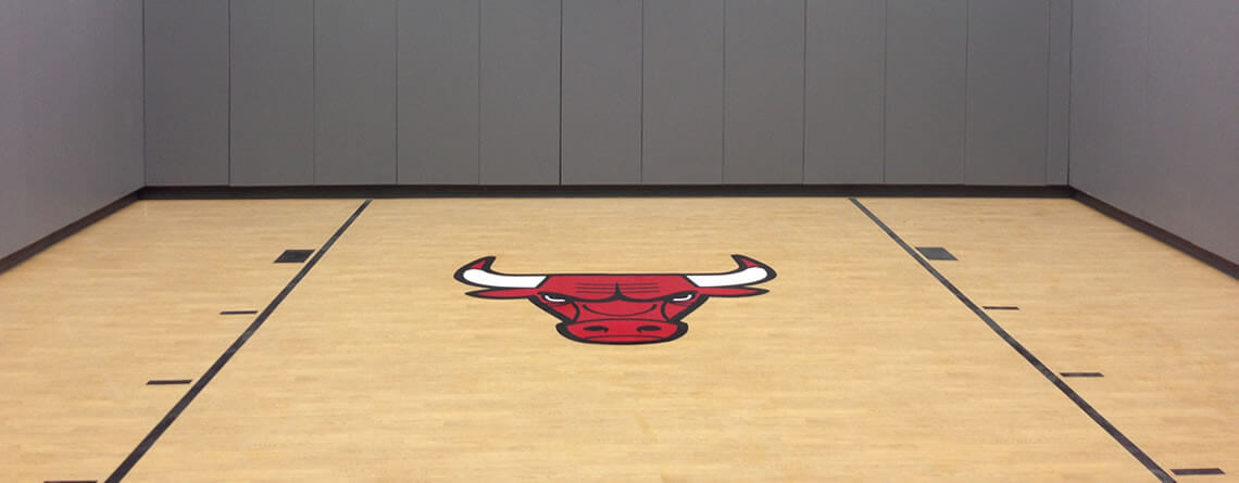 indoor-court-bulls