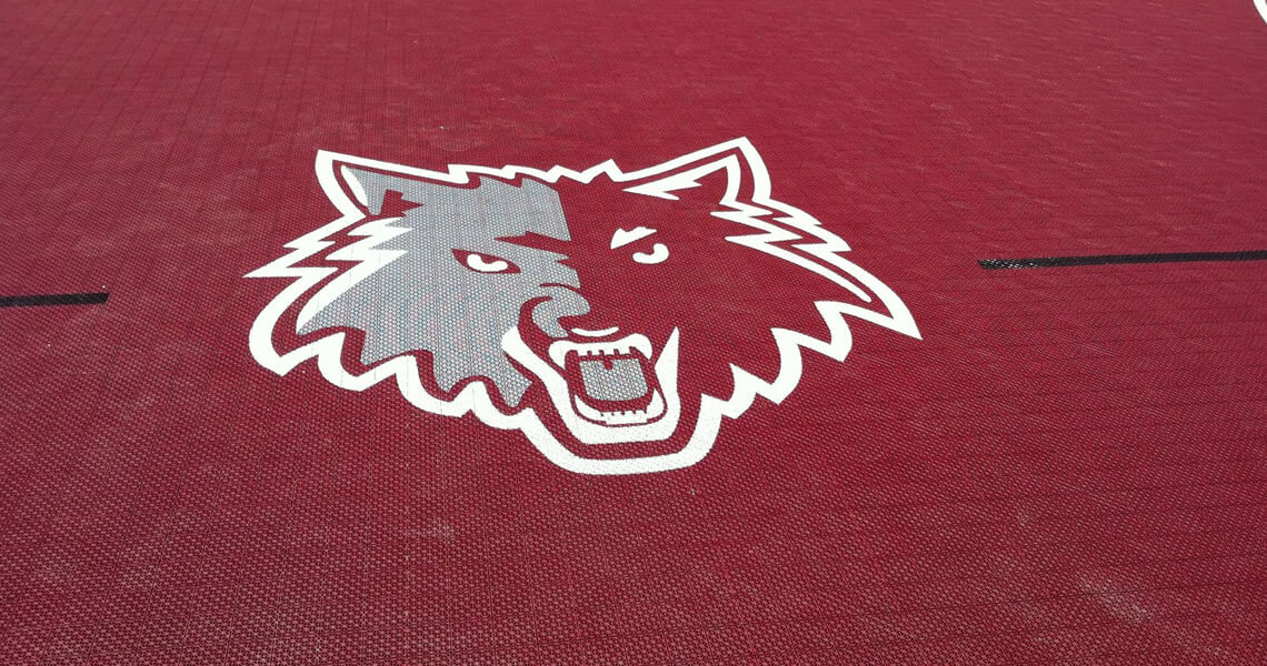 chicago-wolves-logo