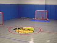 Custom Hockey Room